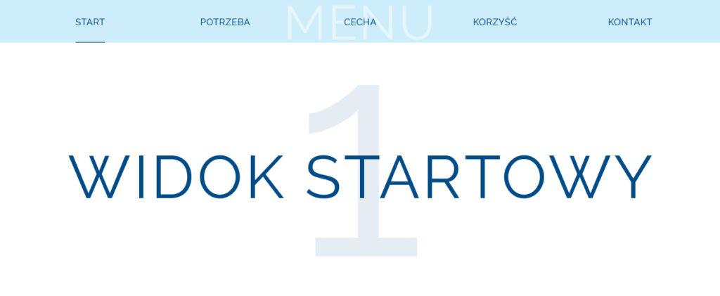 Landing page - 1 etap - widok startowy