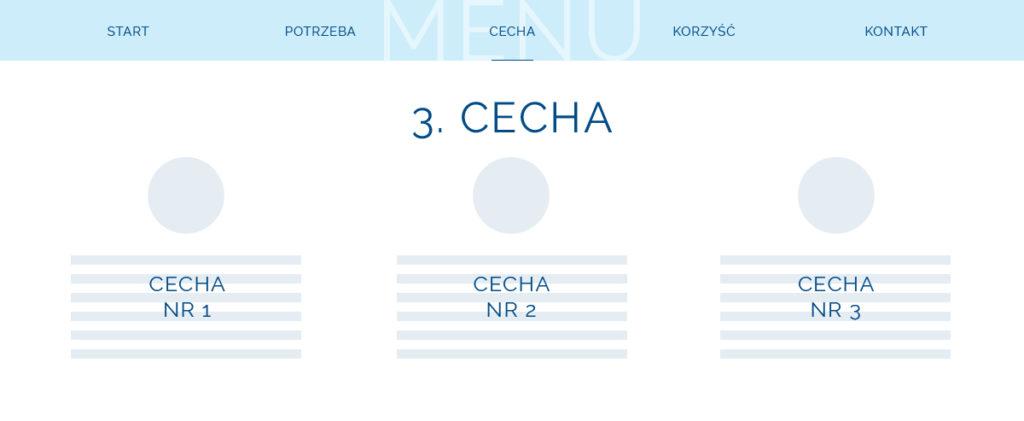 Landing page - 3 etap - cecha